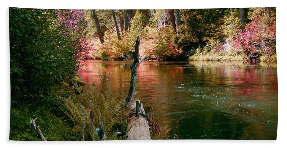 Fall Season Hand Towel featuring the photograph Creek Fall by Peter Piatt