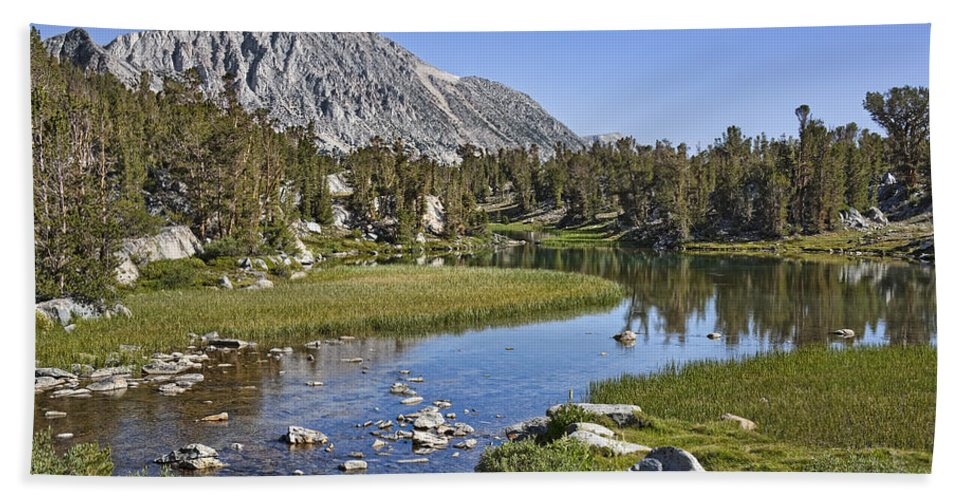 Water Hand Towel featuring the photograph Creek With A View by Kelley King