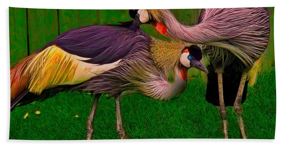 Crest Hand Towel featuring the photograph Crested Cranes by Chris Lord