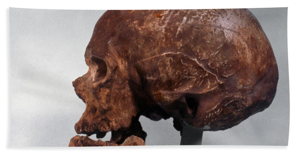 Artifact Hand Towel featuring the photograph Cro-magnon Skull by Granger