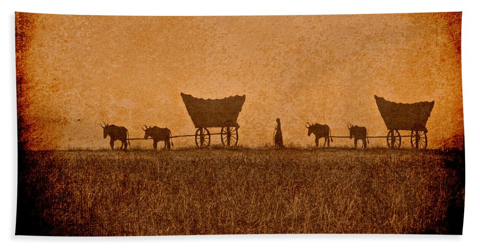 Kansas Hand Towel featuring the photograph Crossing Kansas by Lynn Sprowl