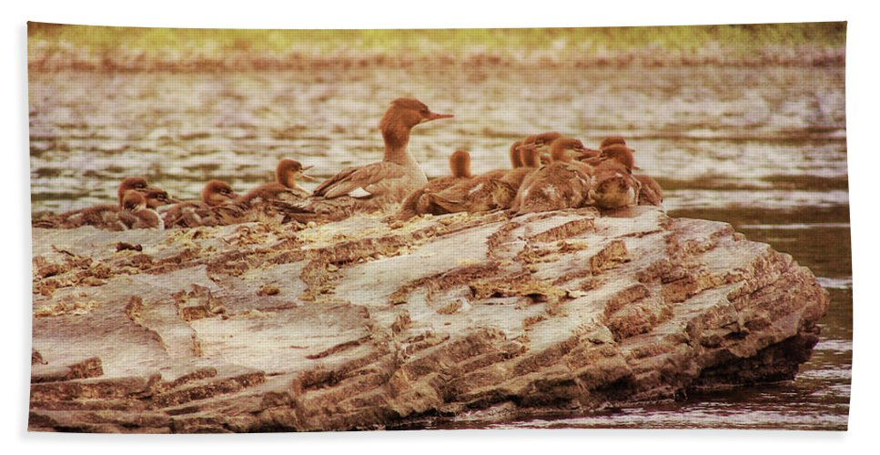 Bird Bath Sheet featuring the photograph Crossing The River by JAMART Photography