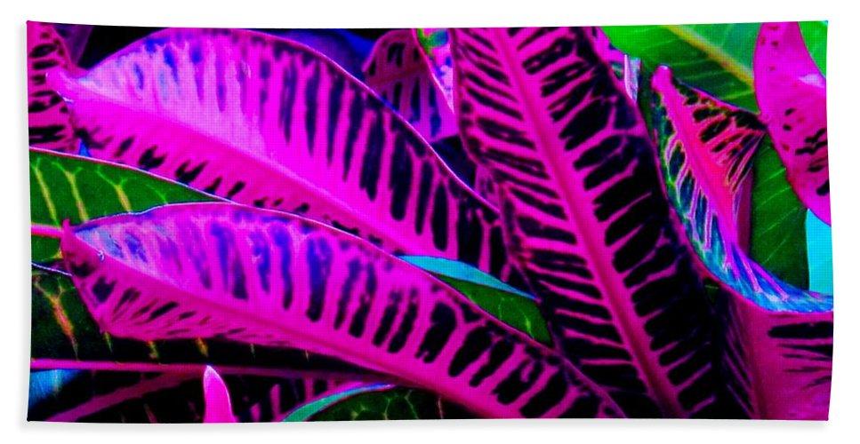 Croydon Plants Purple Green Bath Towel featuring the photograph Croton by Ian MacDonald