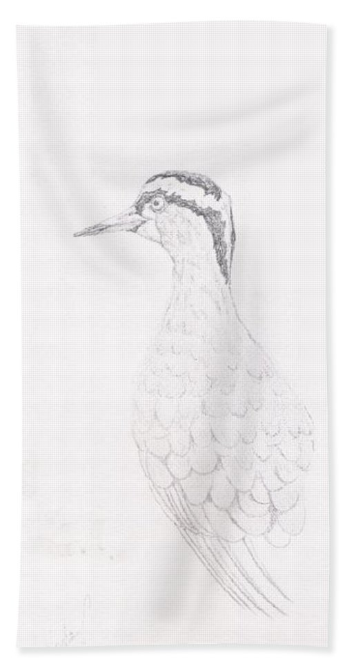 Wildlife Hand Towel featuring the drawing Crowned Lapwing by Wayne Monninger