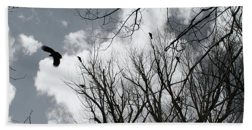 Crows Bath Sheet featuring the photograph Crows In Cottonwoods by Ric Bascobert