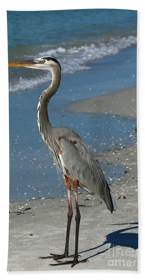 Heron Bath Sheet featuring the photograph Cruising The Beach by Christiane Schulze Art And Photography