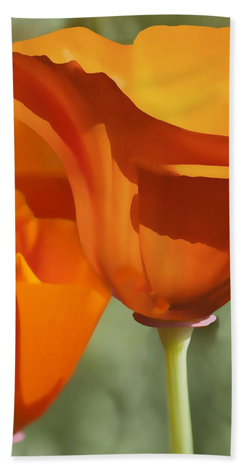 California Bath Sheet featuring the digital art Cup Of Gold by Sharon Foster
