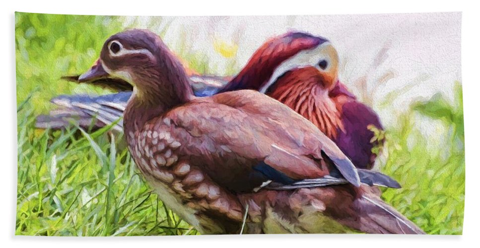Ducks Hand Towel featuring the photograph Cute Couple - Mandarin Ducks by Kerri Farley