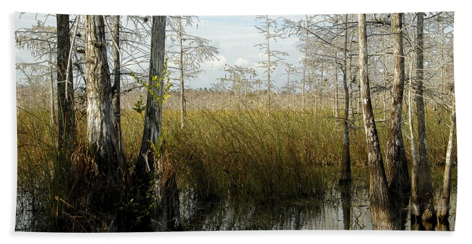 Cypress Trees Hand Towel featuring the painting Cypress Landscape by David Lee Thompson
