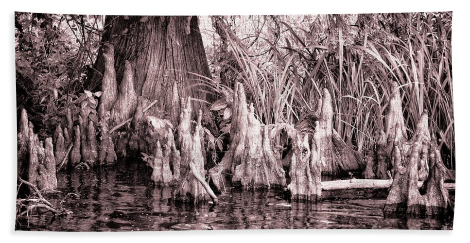 Reelfoot Bath Sheet featuring the photograph Cyprus Knotts by Stanton Tubb