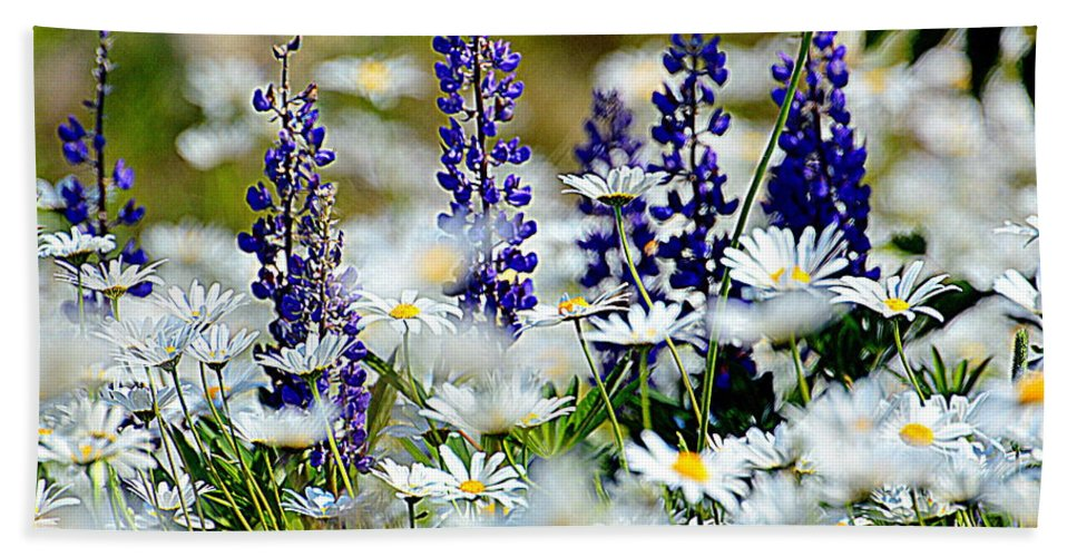 Daisies Bath Sheet featuring the photograph Daisies And Lupine by Sherry McKellar