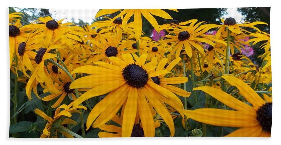 Daisies Hand Towel featuring the photograph Daisies From Niagara by Nina Kindred