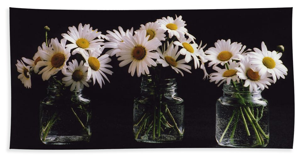 Daisy Hand Towel featuring the photograph Daisies On Black by Rebecca Renfro