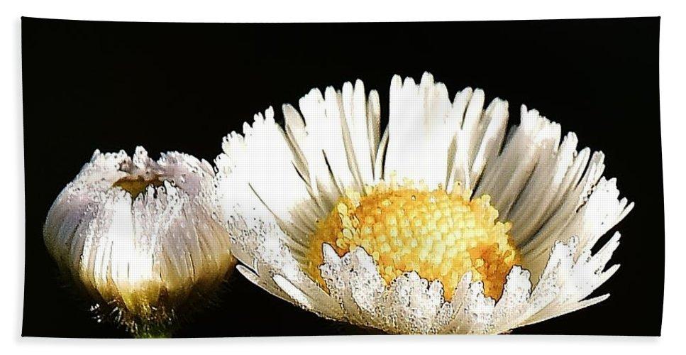 Daisy Bath Sheet featuring the photograph Daisy 6 by Lisa Renee Ludlum
