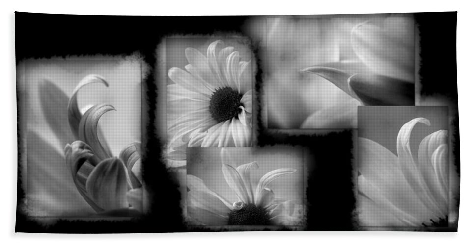 Lauren Radke Hand Towel featuring the photograph Daisy Study by Lauren Radke