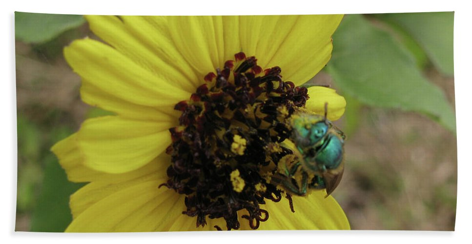 Bee Bath Sheet featuring the photograph Daisy With Blue Bee by Donna Brown