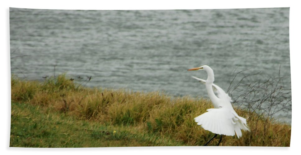 Egret Hand Towel featuring the photograph Dancing Egret by Donna Blackhall