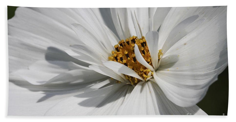 Macro Bath Sheet featuring the photograph Dancing In The Summner Breeze by Deborah Benoit