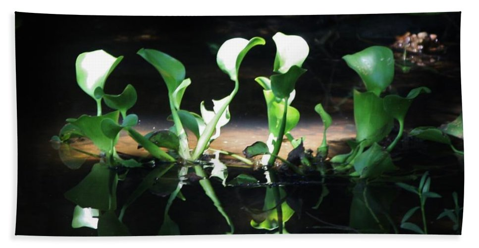 Leaves In Bayou Bath Sheet featuring the photograph Dancing Leaves by Kathy Kirkland