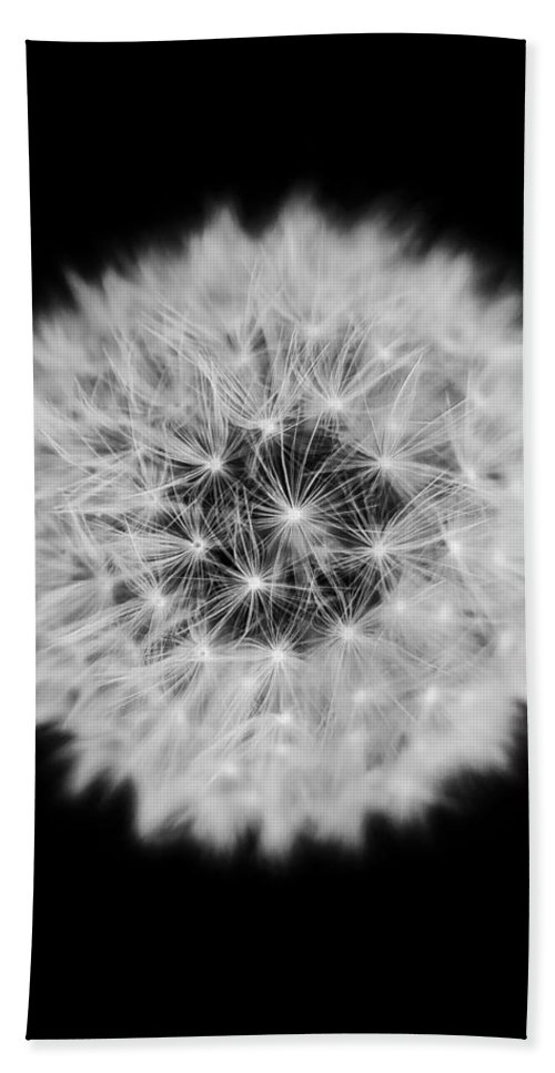 Dandelion Hand Towel featuring the photograph Dandelion 3 V2 by Alex Art and Photo