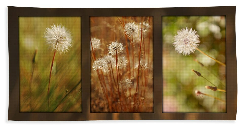 Dandelions Bath Towel featuring the photograph Dandelion Series by Jill Reger