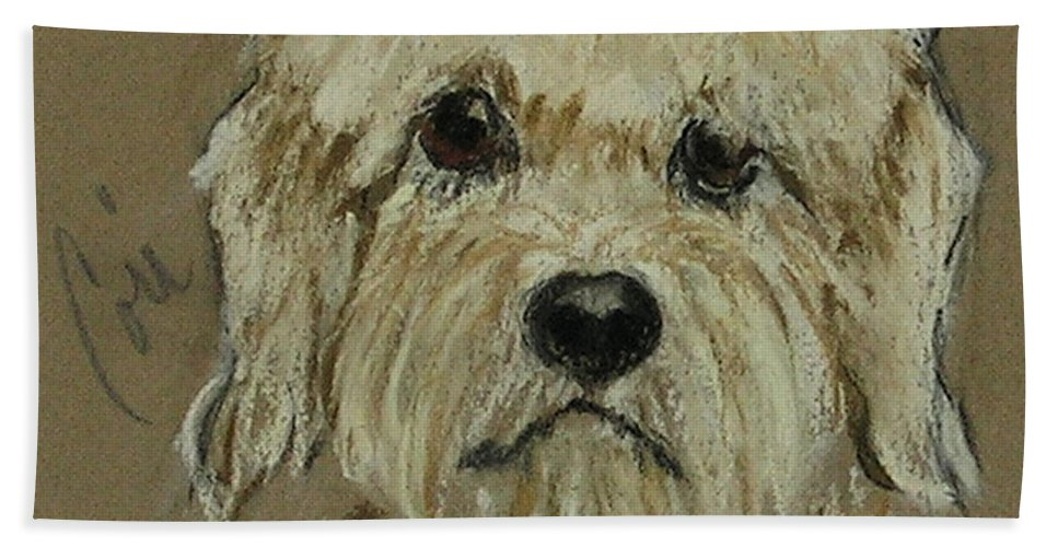 Dandie Dinmont Terrier Hand Towel featuring the drawing Dandie by Cori Solomon