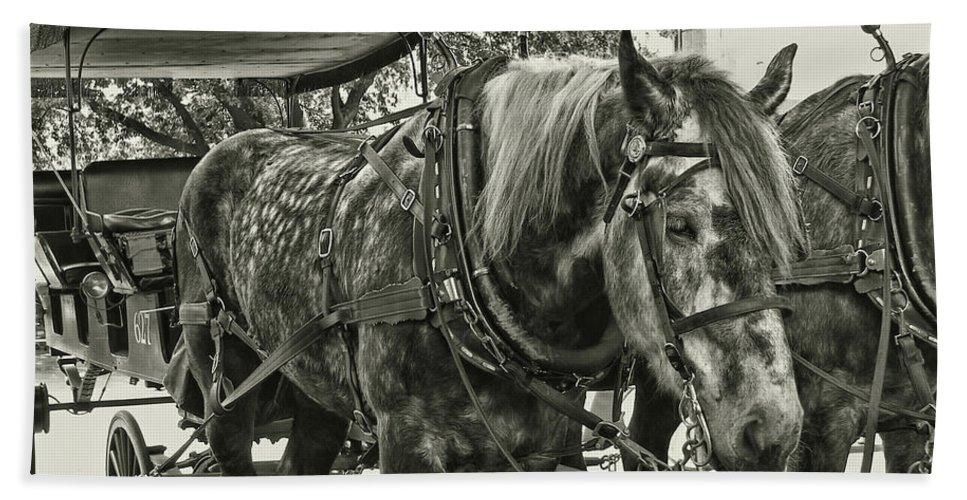 Horse Bath Sheet featuring the photograph Dapple Grey by JAMART Photography
