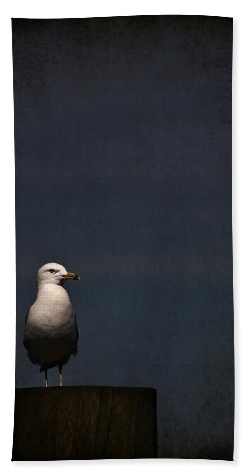Gull Bath Sheet featuring the photograph Darkness Falls by Evelina Kremsdorf