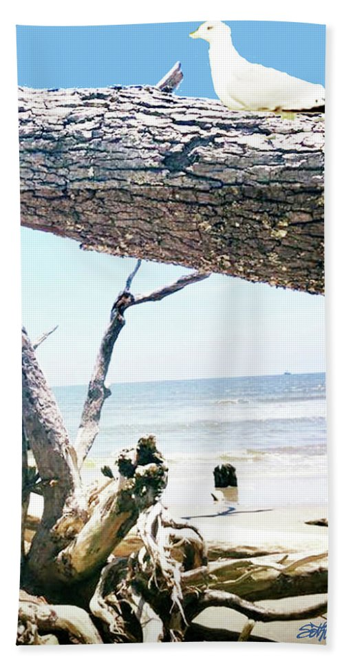 Daydreams And Driftwood Bath Towel featuring the photograph Daydreams and Driftwood by Seth Weaver