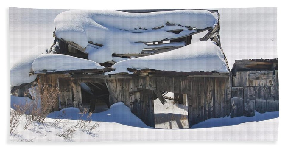 Nature Bath Sheet featuring the photograph Days Gone By by Tonya Hance