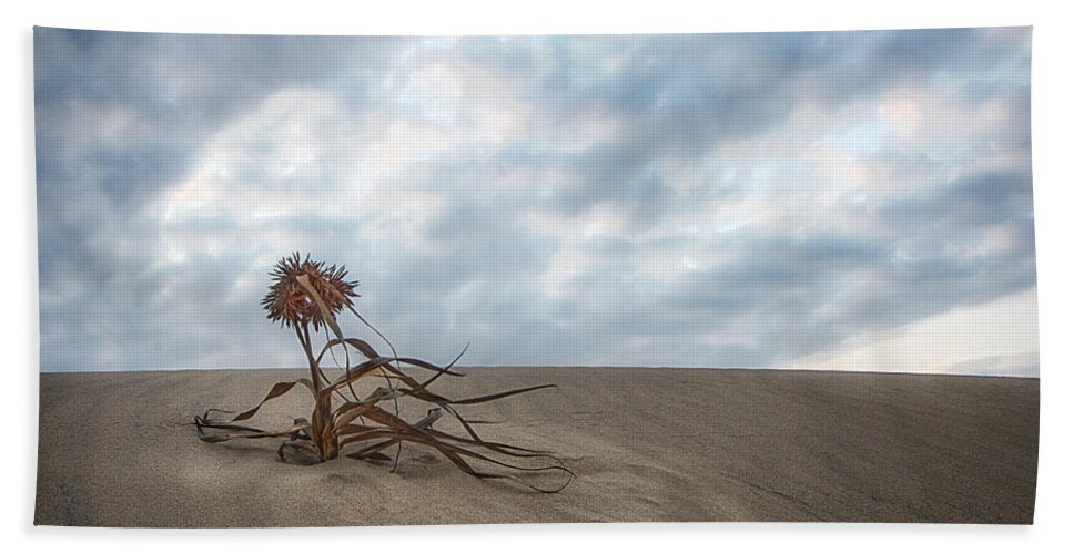 Landscape Bath Sheet featuring the photograph Dead Bush In Sea Sand St Lucia by Ronel Broderick