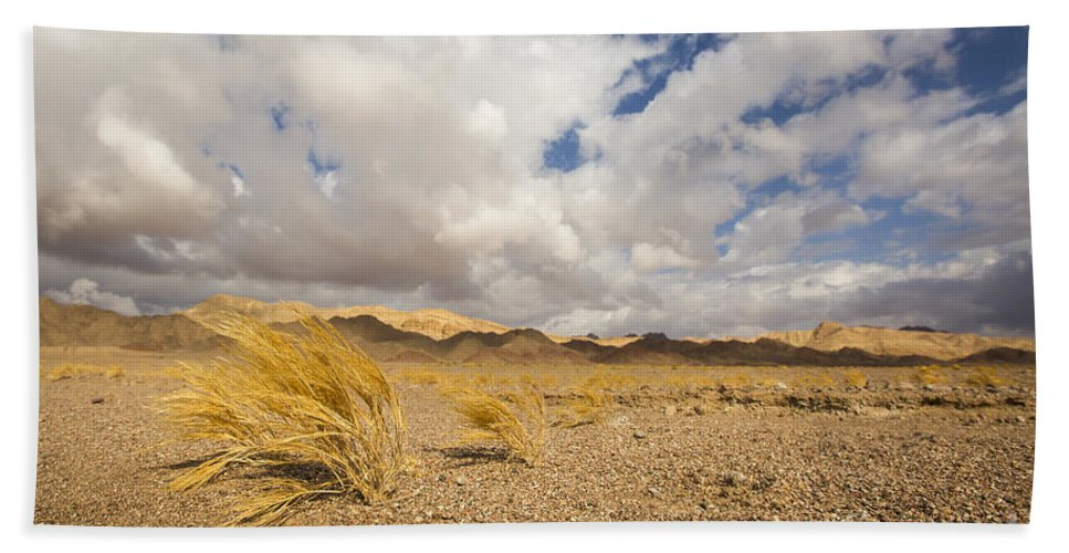 Death Hand Towel featuring the photograph Dead Dry Grass In The Desert by Alon Meir