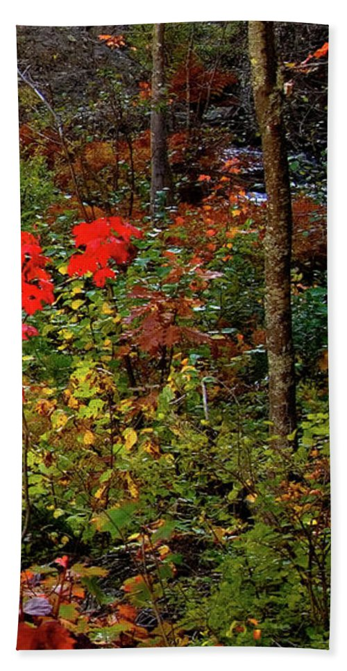 Dead River Falls Hand Towel featuring the photograph 6 of 6 Dead River Falls Marquette Michigan section by Michael Bessler