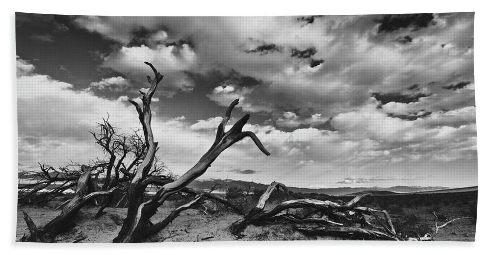 Landscape Bath Sheet featuring the photograph Dead Trees at Mesquite Dunes by Nathan Spotts