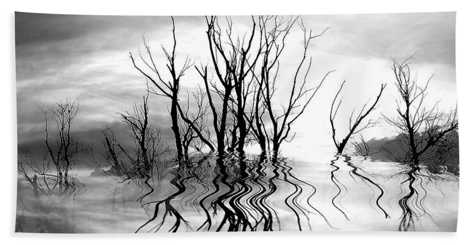 Photography Hand Towel featuring the photograph Dead Trees Bw by Susan Kinney