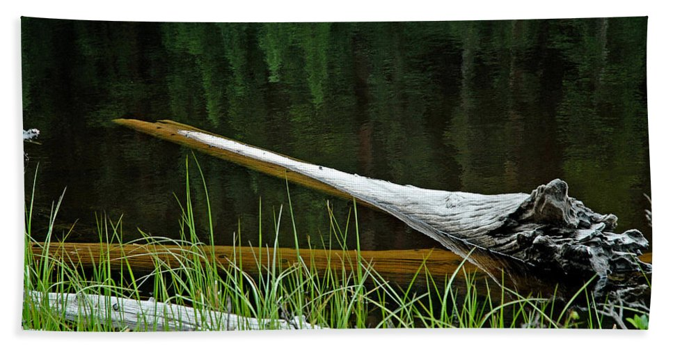 Deadwood Hand Towel featuring the photograph Deadwood And Pine Reflections by Robert Meyers-Lussier
