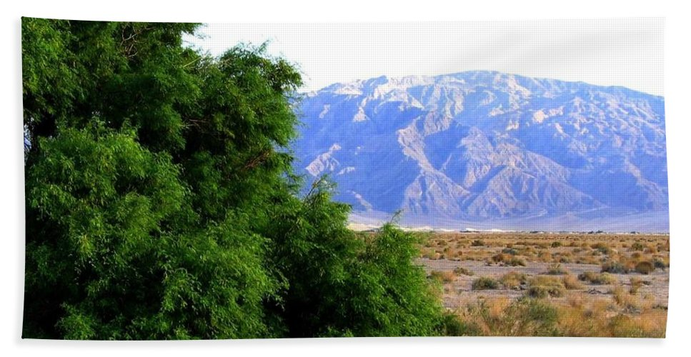 Death Valley Hand Towel featuring the photograph Death Valley 2 by Will Borden