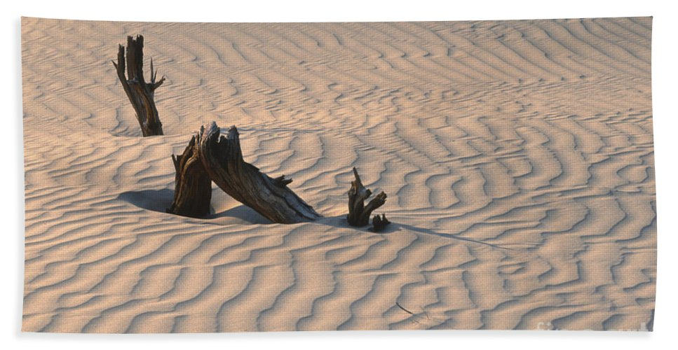 Death Valley Hand Towel featuring the photograph Death Valley Morning by Sandra Bronstein
