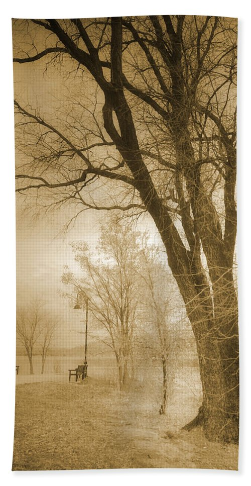 Trees Hand Towel featuring the photograph December Glow by Tara Turner