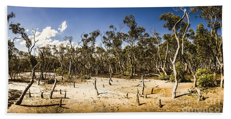 Mangrove Hand Towel featuring the photograph Deception Bay Conservation Park by Jorgo Photography - Wall Art Gallery