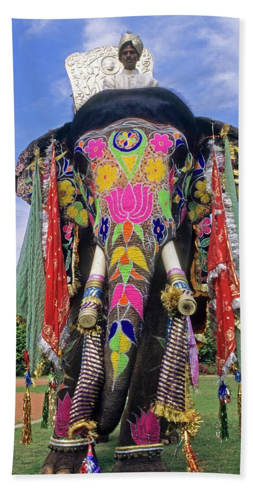 Asia Bath Towel featuring the photograph Decorated Indian Elephant by Michele Burgess