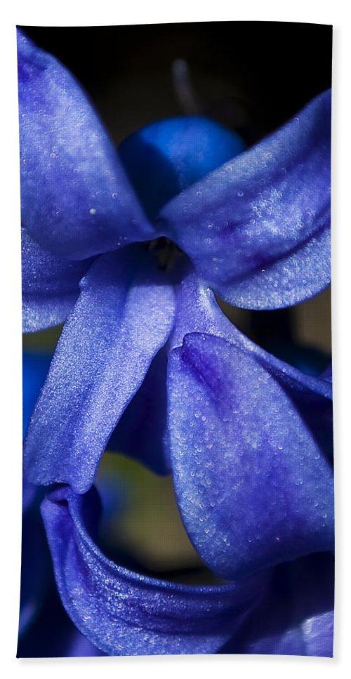 Blue Bath Sheet featuring the photograph Deep Blue Flower by Svetlana Sewell
