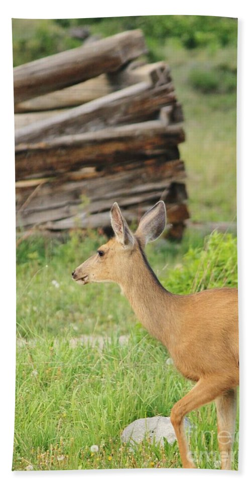 Nature Bath Sheet featuring the photograph Deer By Ghost Town by Tonya Hance