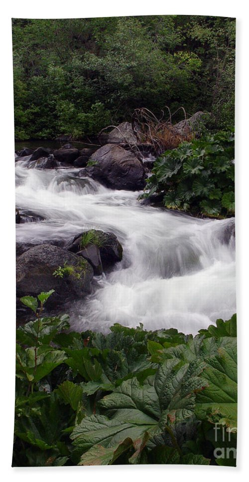 Creek Bath Towel featuring the photograph Deer Creek 07 by Peter Piatt