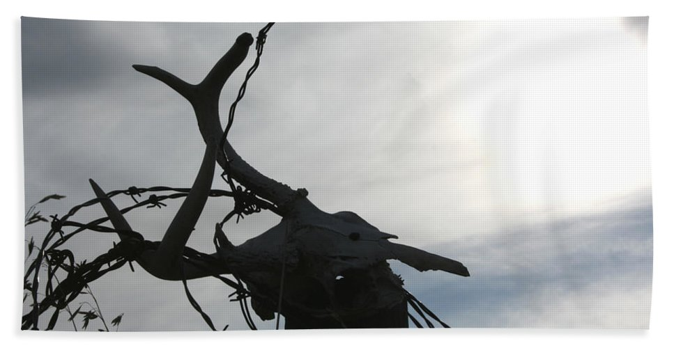 Deer Skull Barbwire Sky Clouds Death Life Horns Bath Sheet featuring the photograph Deer Skull In Wire by Andrea Lawrence
