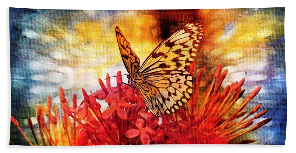 Butterfly Hand Towel featuring the photograph Delicate Beauty by Aaron Berg