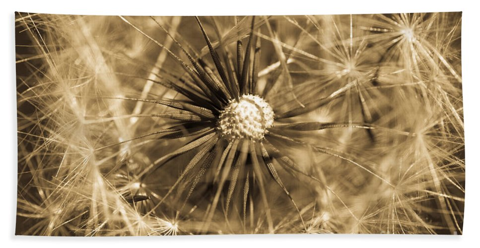 Airy Hand Towel featuring the photograph Delicate Dandelion by Venetta Archer