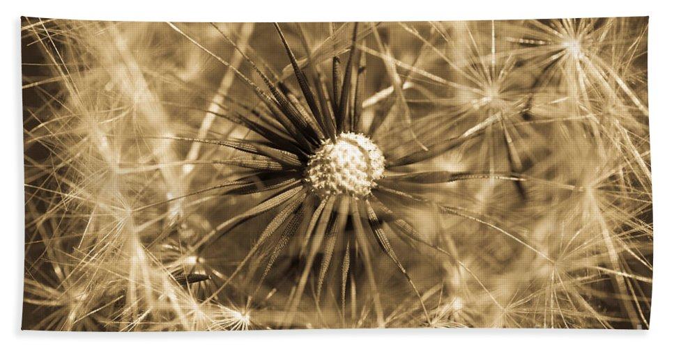 Airy Bath Sheet featuring the photograph Delicate Dandelion by Venetta Archer