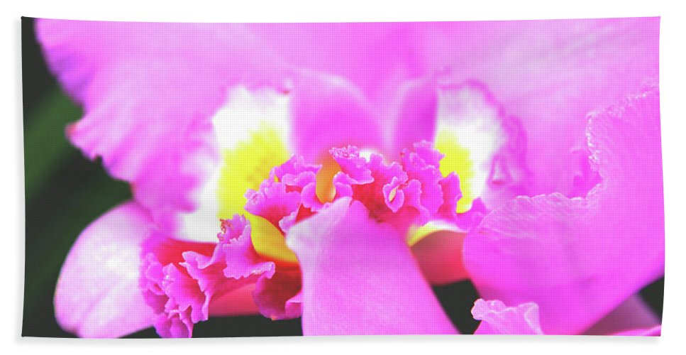 Orchids Bath Sheet featuring the photograph Delicate In Pink by Susanne Van Hulst