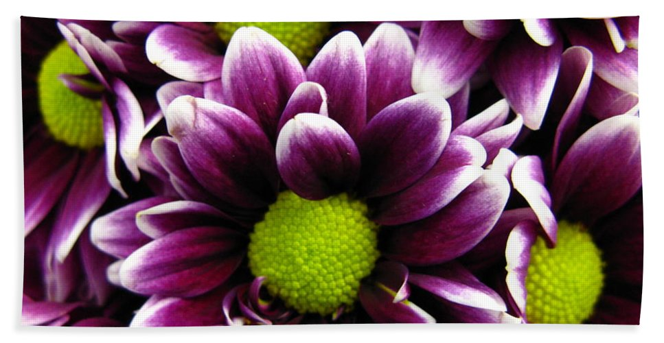 Purple Hand Towel featuring the photograph Delicate Purple by Rhonda Barrett